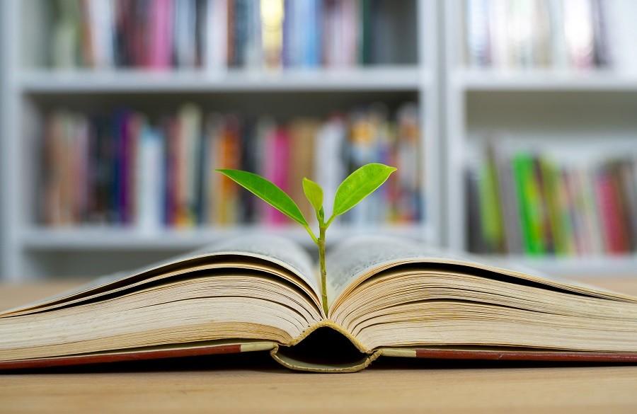 چگونه هدفمند و با بازدهی بیشتر مطالعه کنیم؟