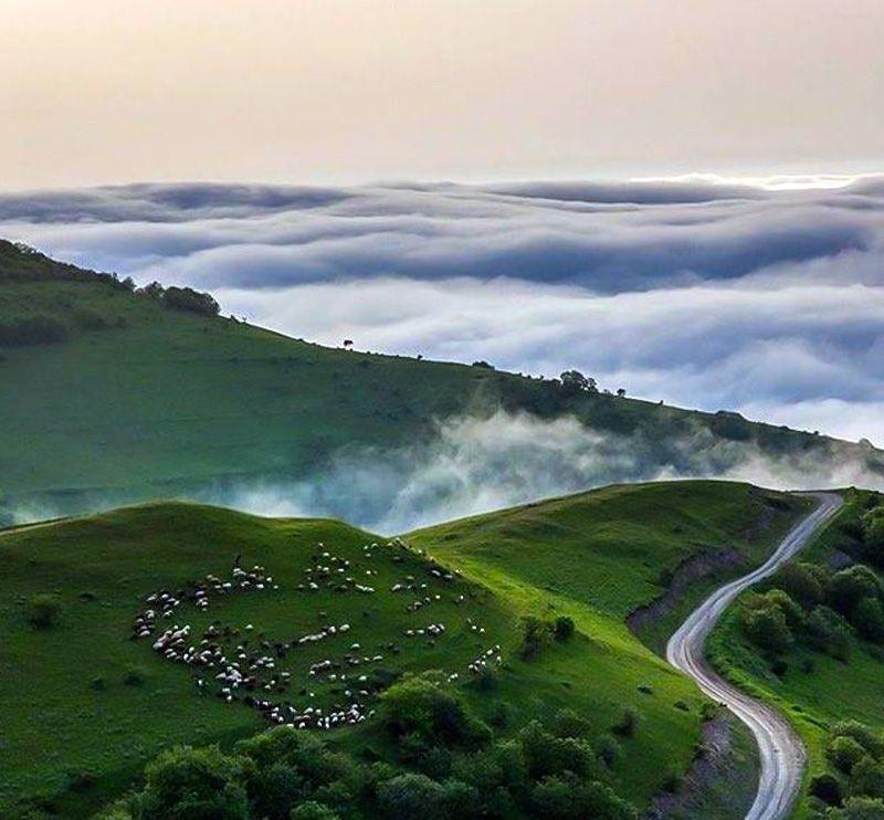 طبیعتی بهشتی در شمال ایران با ساکنان دیار سبز