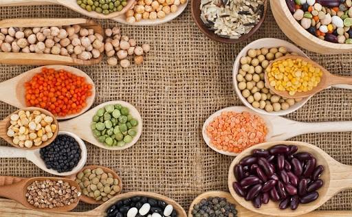 منابع غنی از پروتئین برای وگان