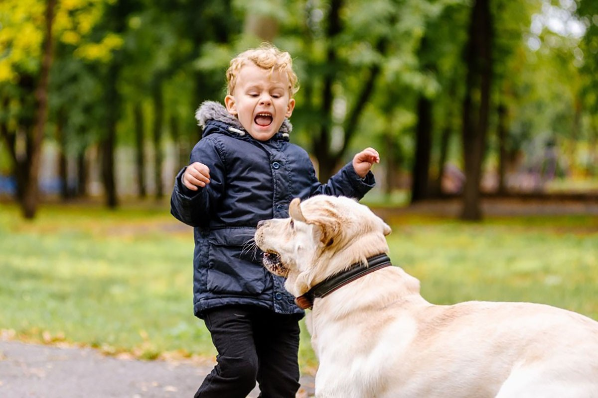 ترسیدن کودکان از حیوانات خانگی