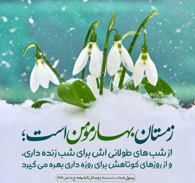 پیامبر اکرم (ص)
