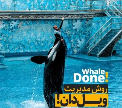 مدیریت ویل دان - Whale Done