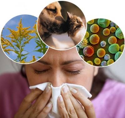 آلرژی ،عوامل ایجادکننده ،علائم وراه درمان آن