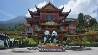 یوننان شهر پاندهای بزرگ در چین