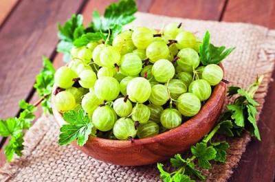 15 مزیت برتر انگور فرنگی هند یا آملا