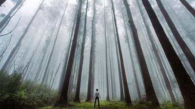 در جستجوی خویش گم شده ام
