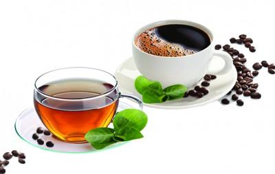 قهوه و چای | محبوبترین نوشیدنیها در جهان