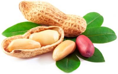 منع مصرف بادام زمینی - دکتر زرین آذر