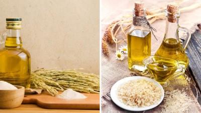 مزایای خواص تغذیه ای وکاربرد روغن سبوس برنج