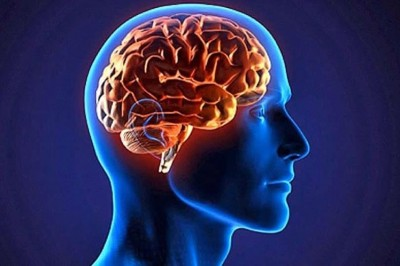 دوازده فرمول برای جوانسازی مغز