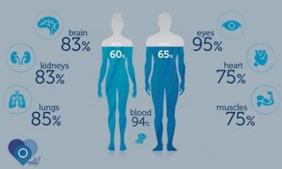 مجمع الجزایر اعضا: 70درصد وزن بدن انسان را آب تشکیل می دهد