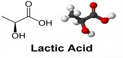 اسید لاکتیک و نقش آن در ورزش