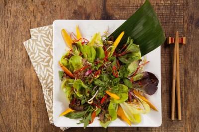 سالاد گوشت - تایلندی