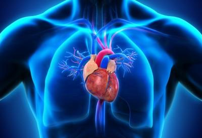مکمل سلامت قلب را مصرف کنید