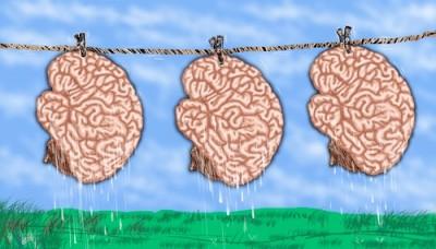 از بهداشت مغز چه می دانید ؟ !