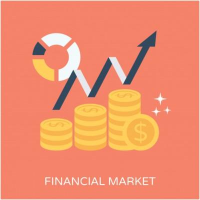 چگونگی رشد و افول بازارهای مالی به همراه جزئیات