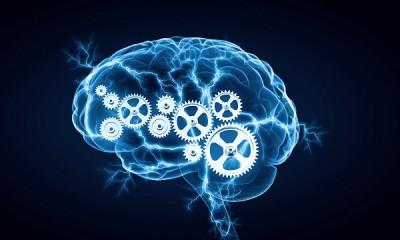 اثر ورزش کردن بر روی مغز انسان