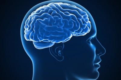 از بین بردن خاطرات بد توسط مغز