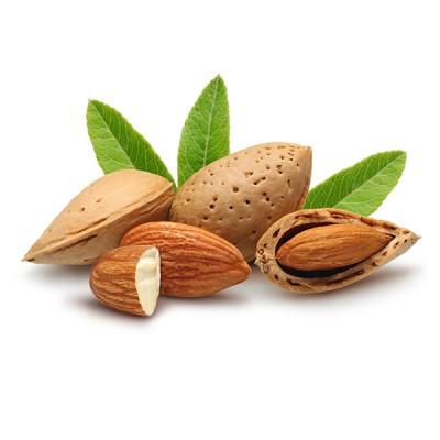 سالمترین ماده غذایی و فوائد تغذیه و سلامتی بادام