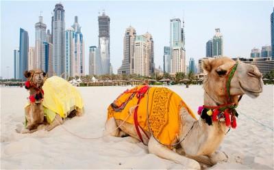 آشنایی کلی با زندگی در دبی