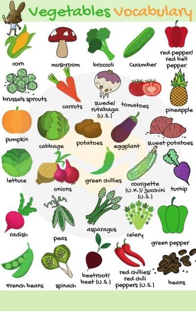 اسامی سبزیجات به زبان انگلیسی
