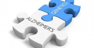 کشف جهش ژنی دخیل در بیماری آلزایمر