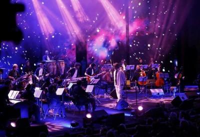 بررسی شرایط از سرگیری کنسرتهای موسیقی