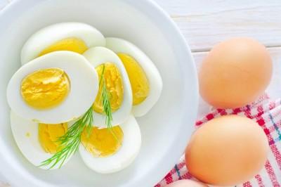 چه تعداد تخم مرغ در هفته باید بخوریم؟