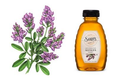 درمان بریدگی و سایش با مریم گلی و عسل