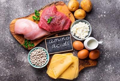 پروتئین ها و اسیدهای آمینه و مواد معدنی