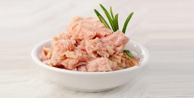 دستور های غذایی با تن ماهی