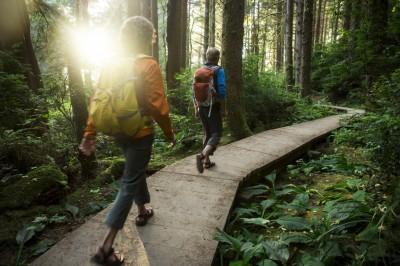پیاده روی: راهی آسان برای تناسب اندام