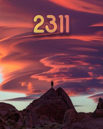 عدد فرشته 2311