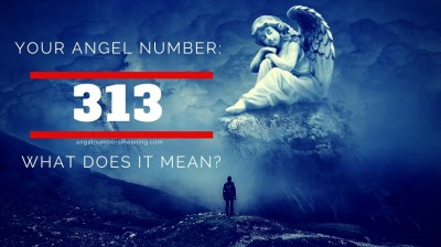 عدد فرشته  313